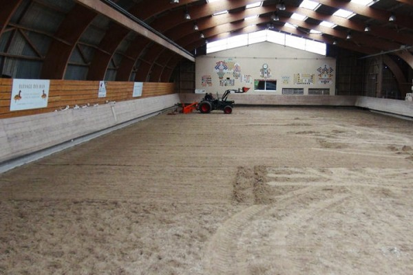 SURFACE EQUESTRE
